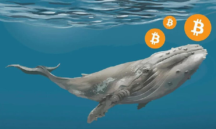 Третий по величине биткоин-кит продал 1500 BTC за $ 54300