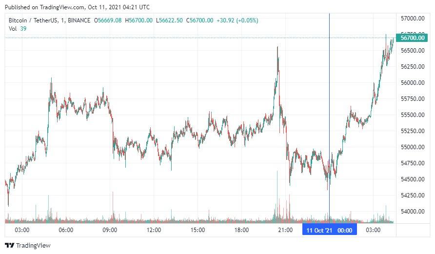 Инвесторы дали прогнозы по bitcoin на фоне выхода криптовалюты в рост