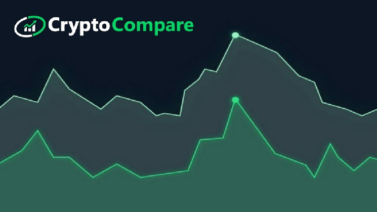 CryptoCompare: В 2019 году было взломано 3% криптовалютных бирж