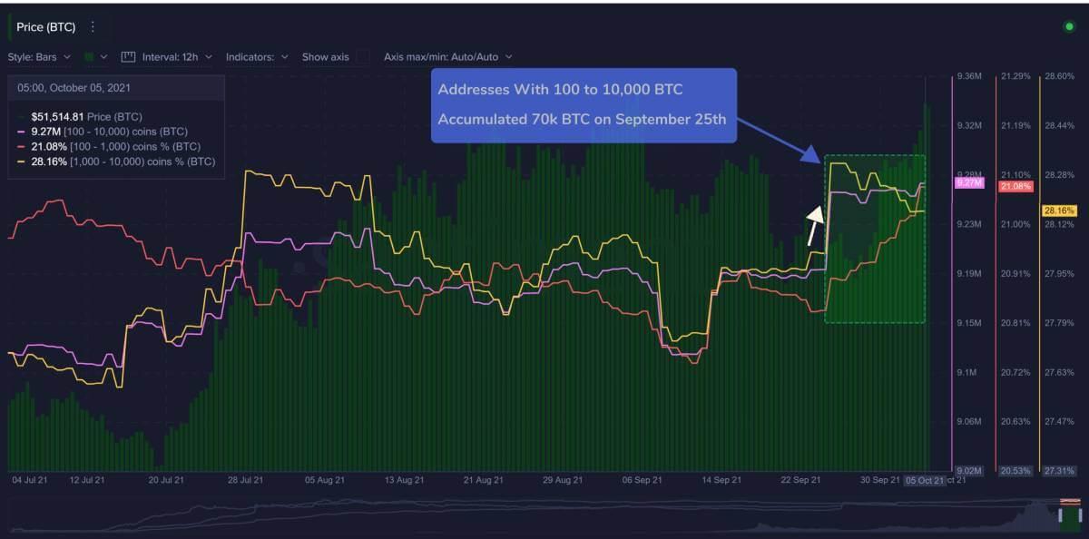 За последние 10 дней криптокиты накопили 70 000 биткоинов